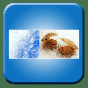 Mesin Ice Flaker