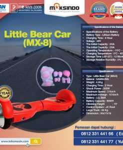 Little Bear Car